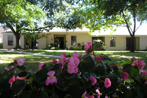 Finding The Best Senior Community In Austin For Your Loved One