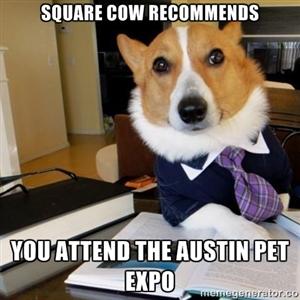 Austin Pet Expo Dog Meme 8_2_13