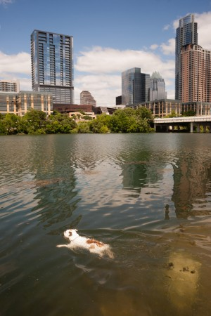 10 Things You May Not Know About Austin