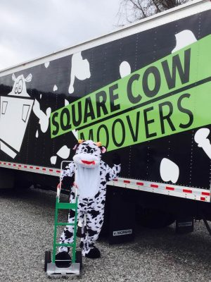Square Cow Movers: Our Culture